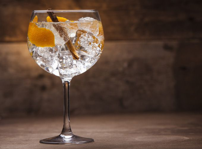 The best gins in Tarporley at the Rising Sun near Chester and Oulton Park